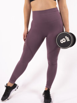 purple legging seamless high-waist